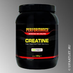 Performance - Pure Creatine (500 g)