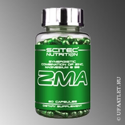 SCITEC NUTRITION - ZMA (60 caps)